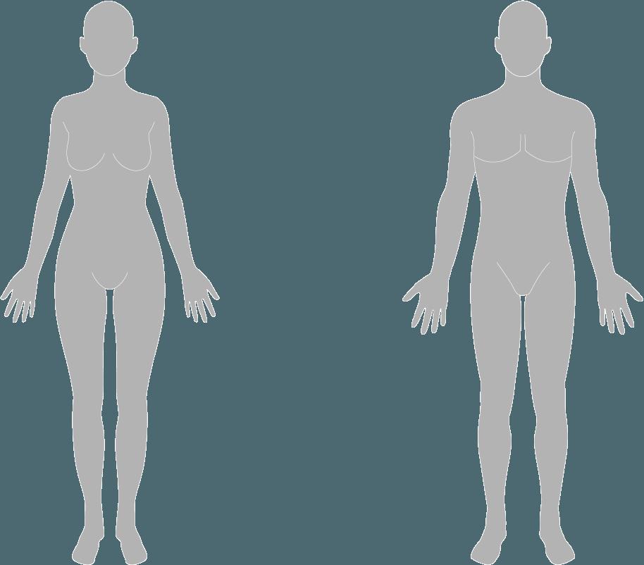 Body-illo_1