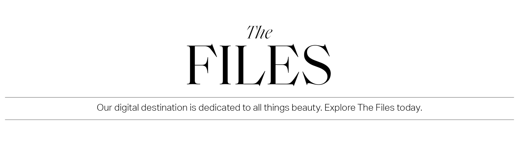 the-files-bsc-title-3